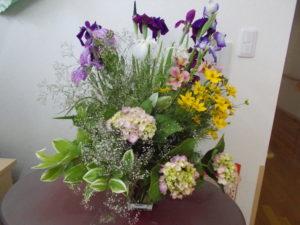 季節のお花🌼